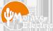 Mojave Electric
